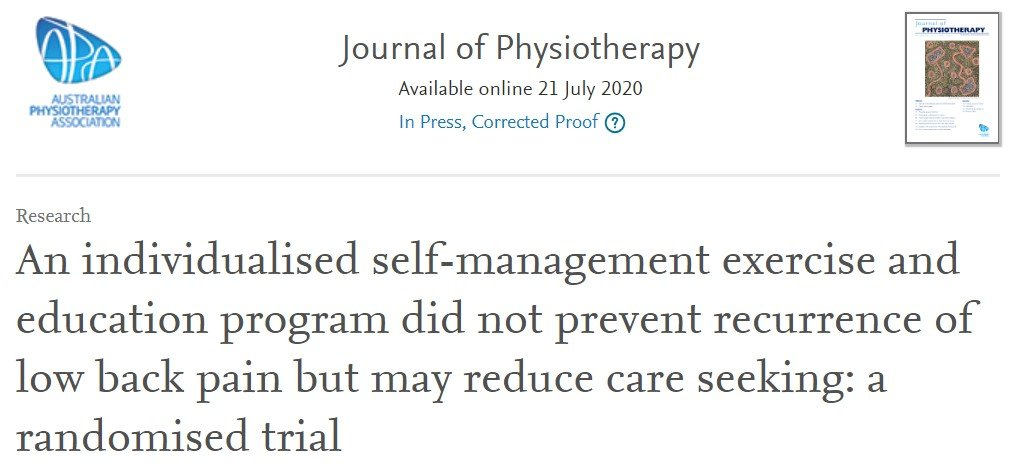 physiotherapy, exercise program, low back pain