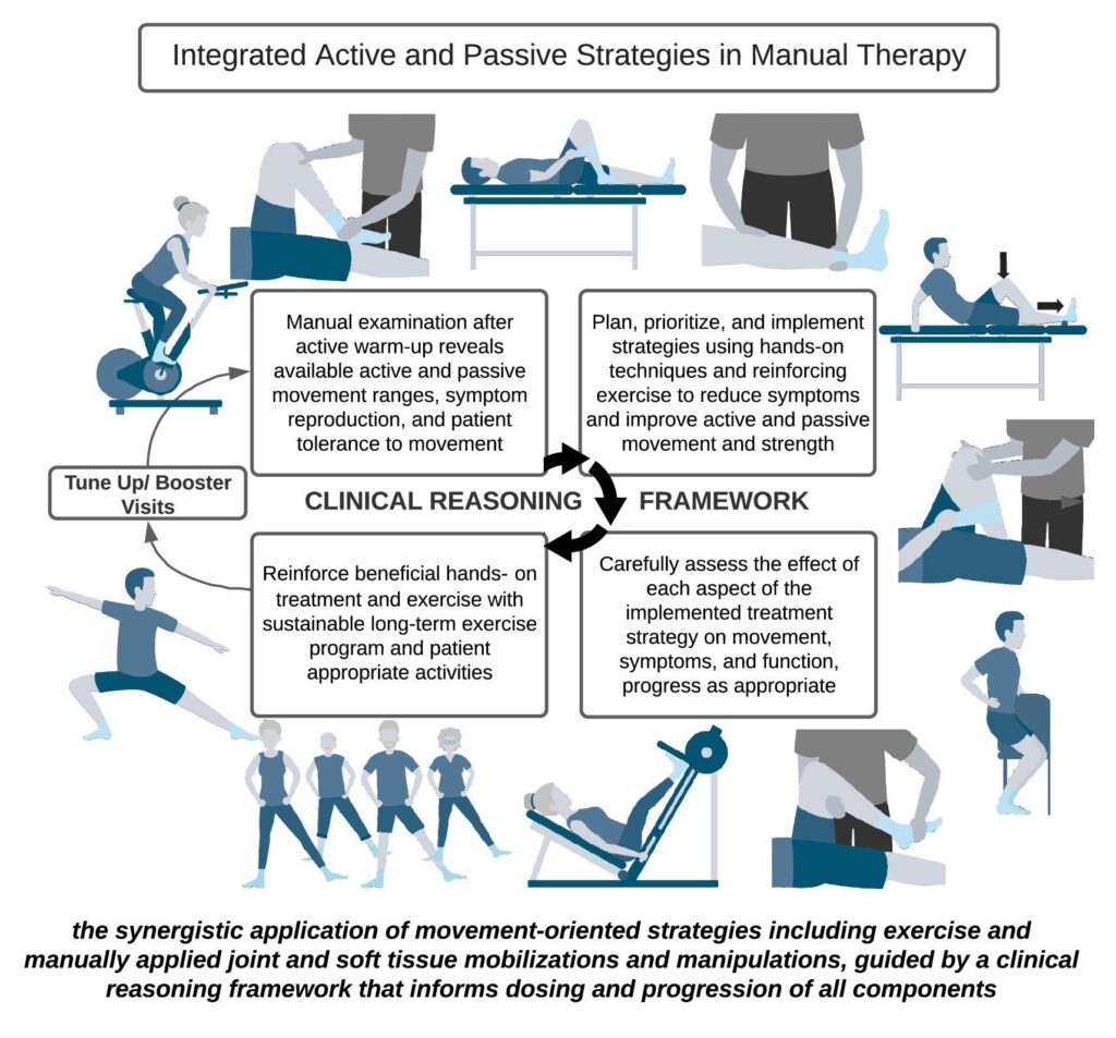 manual therapy recovery model